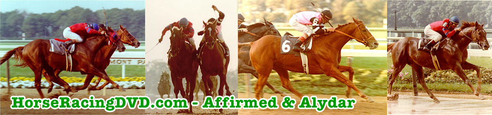 Affirmed & Alydar