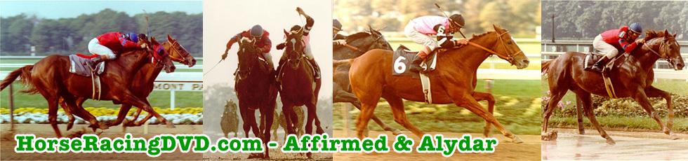 Affirmed & Alydar