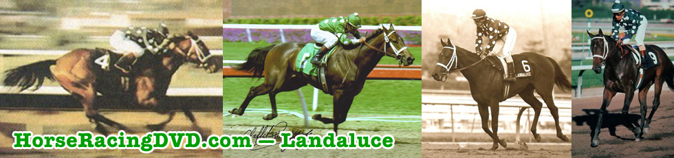 Landaluce