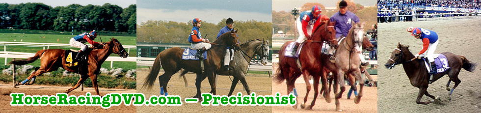 Precisionist