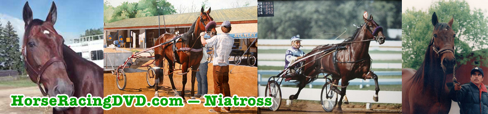 Niatross