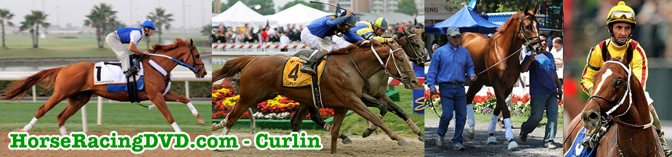 Curlin