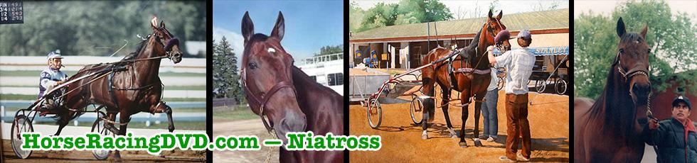 Niatross