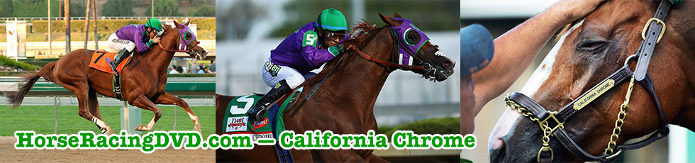 California Chrome