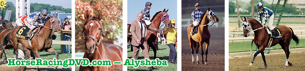 Alysheba