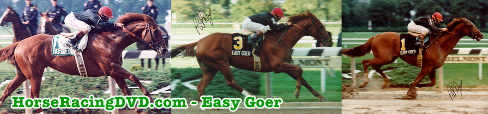 Easy Goer