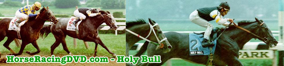 Holy Bull