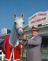 AMERICAN HORSE & HORSEMAN Vol. III w/ Lengthy GREYHOUND Segment