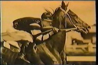 PHAR LAP (The Movie)
