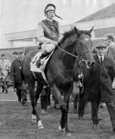 NIJINSKY (A Horse Called) w/BONUS FOOTAGE