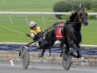 2002 TROTTERS ONLY YEAR-END REVIEW