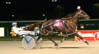 2001 TROTTERS ONLY YEAR-END REVIEW