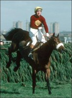 RED RUM: A NATIONAL TREASURE