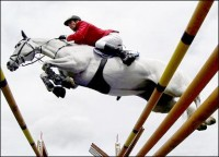 HORSE IN SPORT: SHOWJUMPING