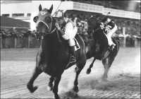 SEABISCUIT (PBS)